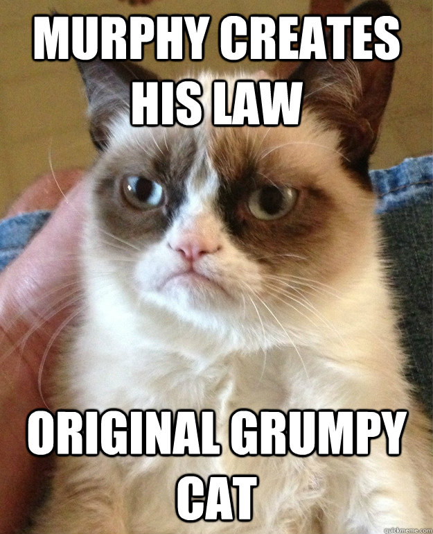 murphy creates his law original grumpy cat - Grumpy cat