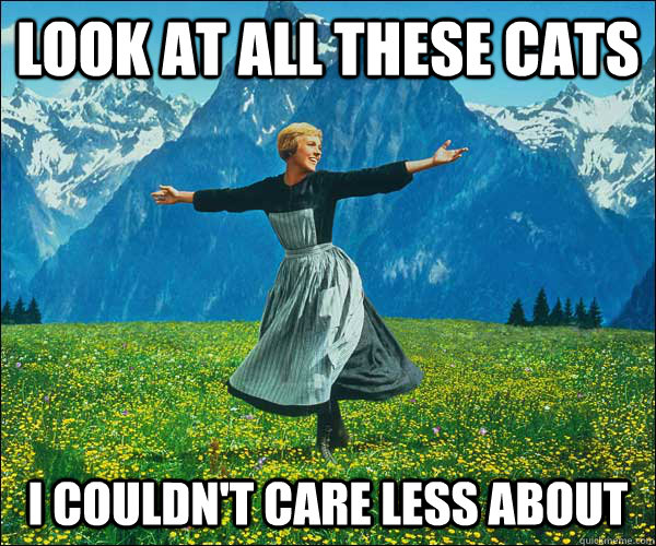 look at all these cats i couldnt care less about - Sound of Music
