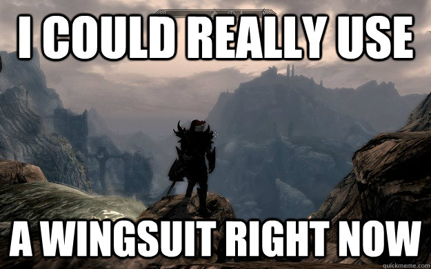i could really use a wingsuit right now -