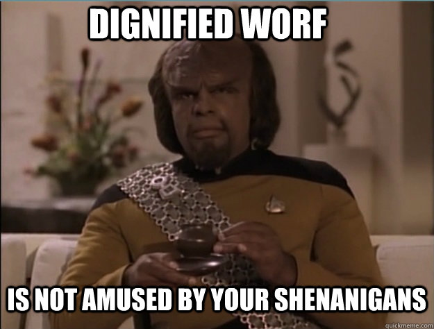 dignified worf is not amused by your shenanigans - Dignified Worf