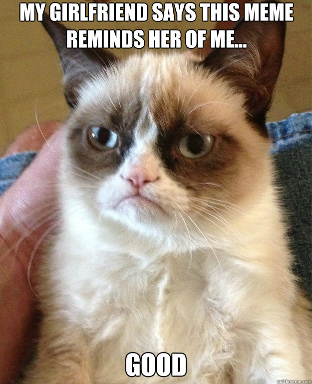 my girlfriend says this meme reminds her of me good - Grumpy Cat