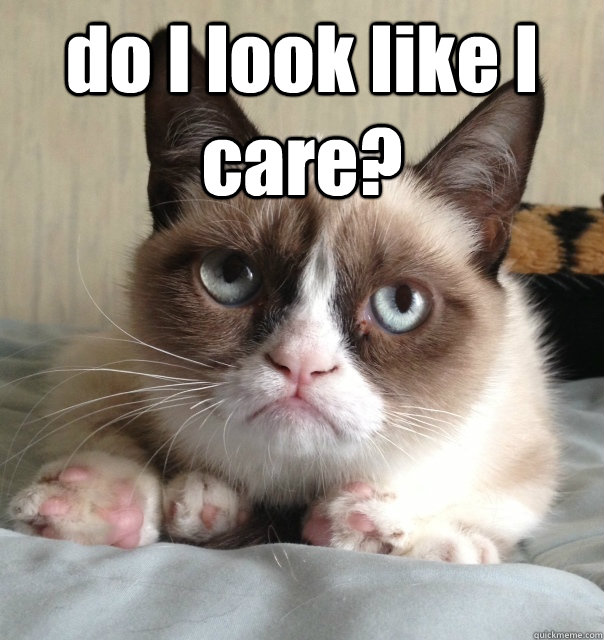 do i look like i care  - Grumpy cat