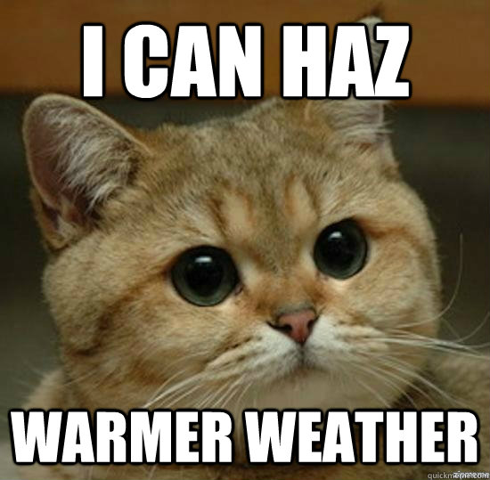 i can haz warmer weather - Motherfucking game