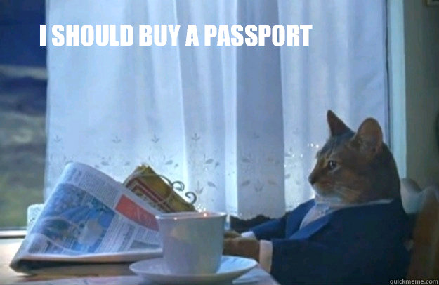 i should buy a passport - Sophisticated Cat