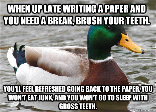 when up late writing a paper and you need a break brush you - Actual Advice Mallard
