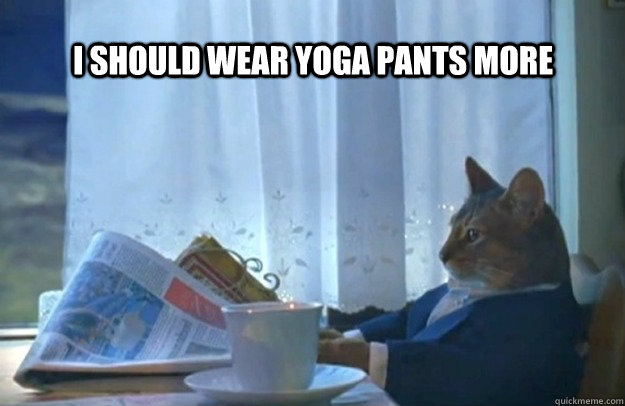 i should wear yoga pants more  - Sophisticated Cat