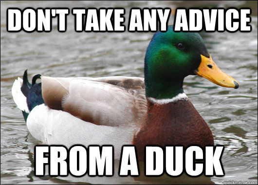 dont take any advice from a duck - Actual Advice Mallard