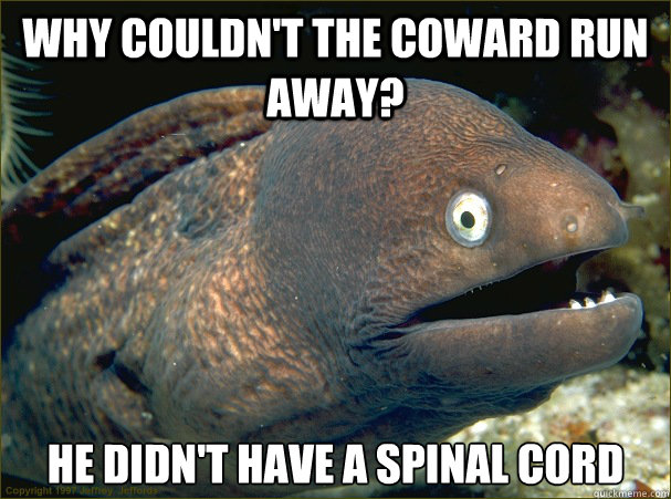 why couldnt the coward run away he didnt have a spinal co - Bad Joke Eel