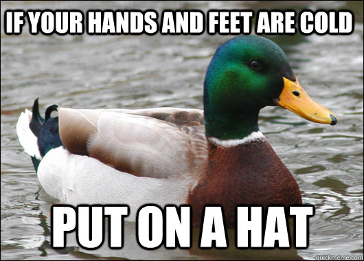 if your hands and feet are cold put on a hat - Actual Advice Mallard