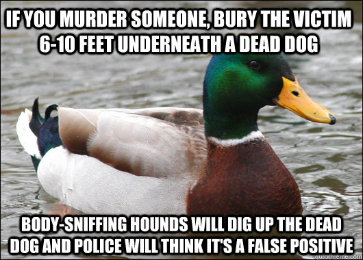 if you murder someone bury the victim 610 feet underneath  - Actual Advice Mallard