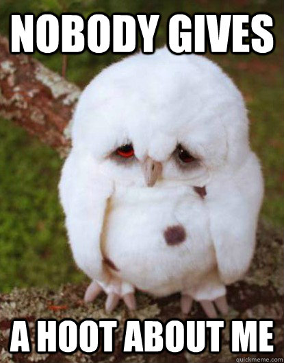 nobody gives a hoot about me  - Depressed Owl