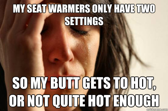 my seat warmers only have two settings so my butt gets to ho - First World Problems
