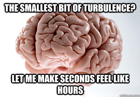 the smallest bit of turbulence let me make seconds feel lik - Scumbag Brain