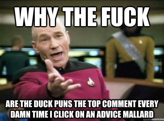 why the fuck are the duck puns the top comment every damn ti - Annoyed Picard HD