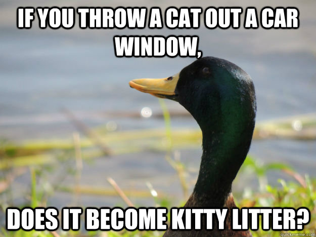 if you throw a cat out a car window does it become kitty li - Deep Thought duck