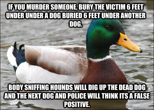 if you murder someone bury the victim 6 feet under under a  - Actual Advice Mallard