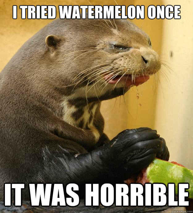 i tried watermelon once it was horrible - Sourpuss otterpants