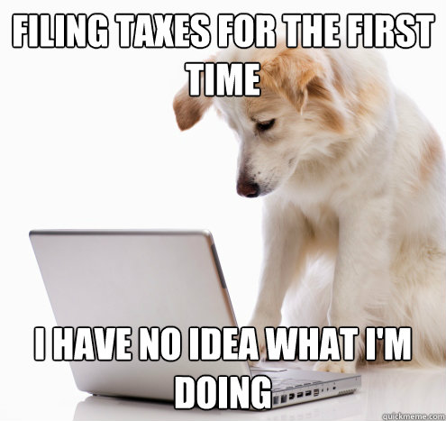filing taxes for the first time i have no idea what im doin - no idea dog