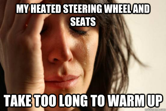 my heated steering wheel and seats take too long to warm up - First World Problems