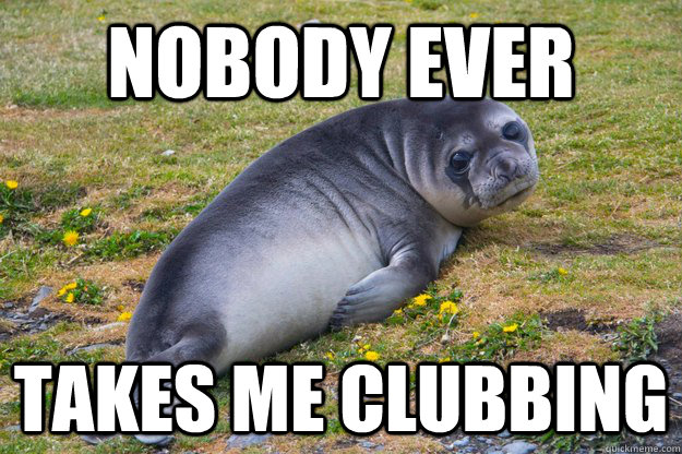nobody ever takes me clubbing - sad seal