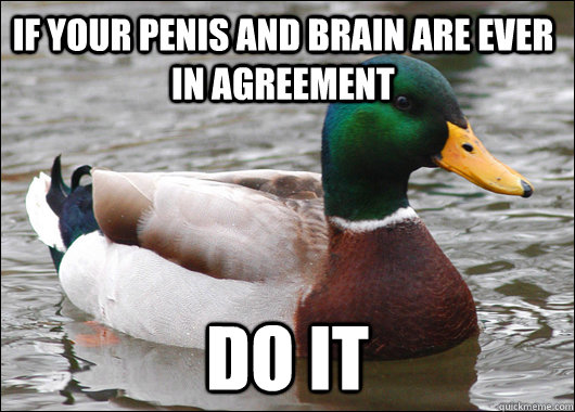 if your penis and brain are ever in agreement do it - Actual Advice Mallard