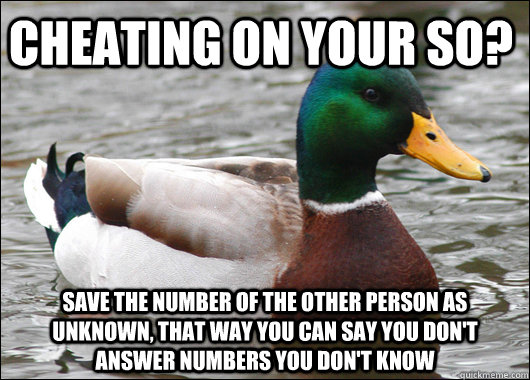 cheating on your so save the number of the other person as  - Actual Advice Mallard