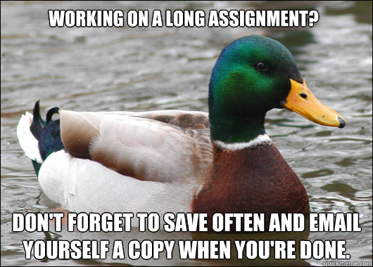 working on a long assignment dont forget to save often and - Actual Advice Mallard
