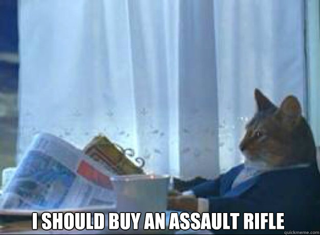 i should buy an assault rifle  - I should buy a boat cat