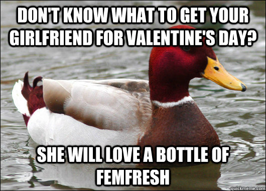dont know what to get your girlfriend for valentines day  - Malicious Advice Mallard