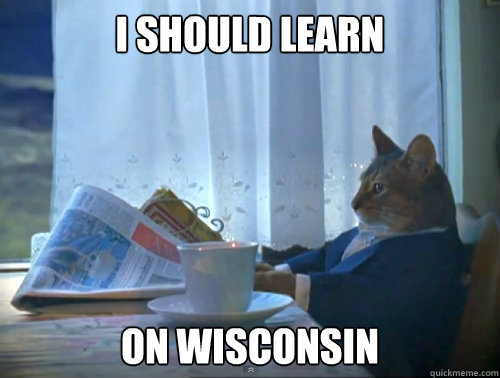 i should learn on wisconsin - The One Percent Cat
