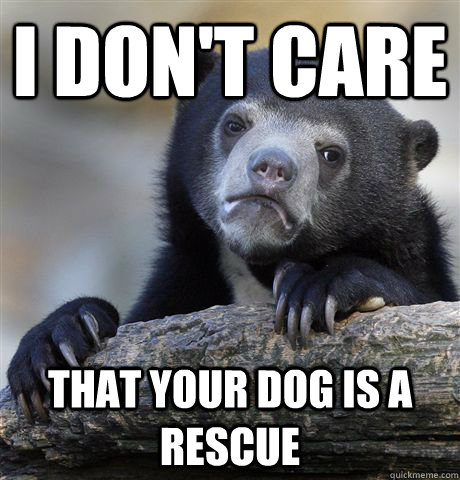 i dont care that your dog is a rescue - Confession Bear
