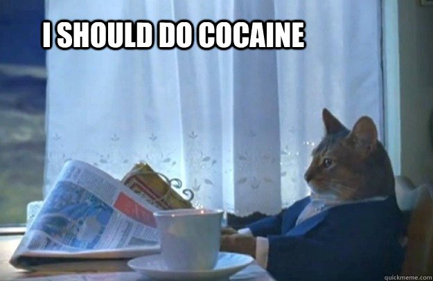 i should do cocaine - Sophisticated Cat