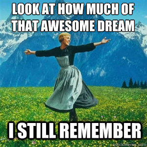 look at how much of that awesome dream i still remember - And look at all the fucks I give