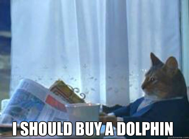 i should buy a dolphin  - I should buy a boat cat