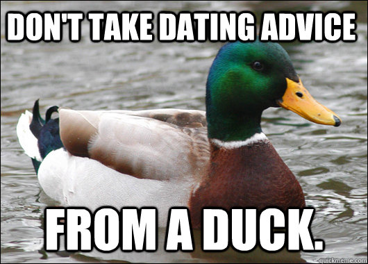 dont take dating advice from a duck - Actual Advice Mallard