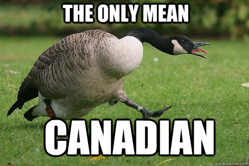 the only mean canadian -