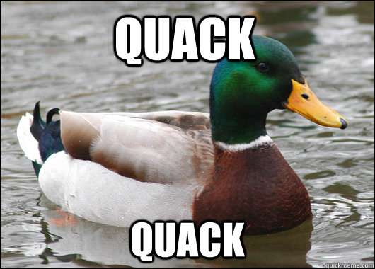 quack quack - Actual Advice Mallard
