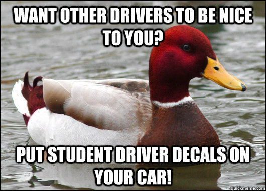 want other drivers to be nice to you put student driver dec - Malicious Advice Mallard