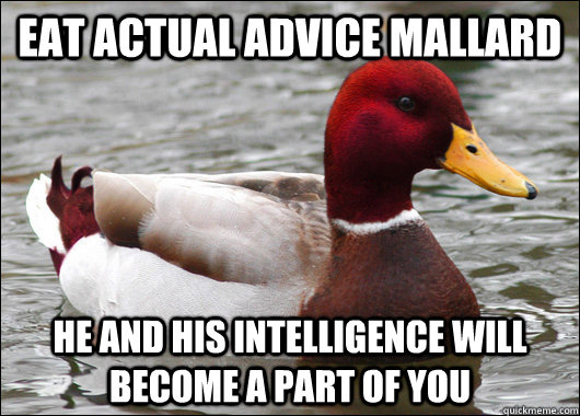 eat actual advice mallard he and his intelligence will becom - Malicious Advice Mallard