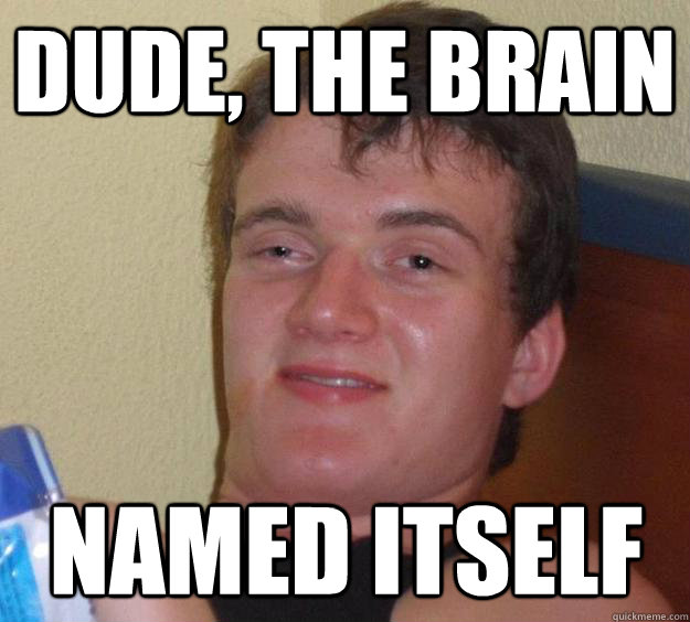 dude the brain named itself - 10 Guy