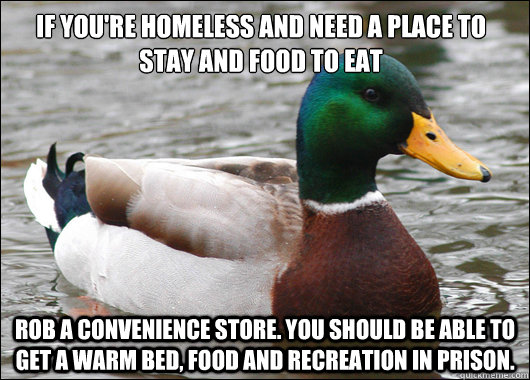 if youre homeless and need a place to stay and food to eat  - Actual Advice Mallard