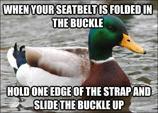 when your seatbelt is folded in the buckle hold one edge of  - Actual Advice Mallard