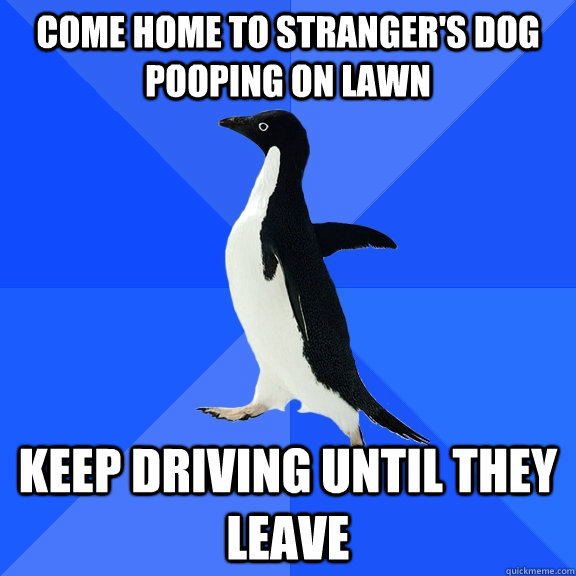 come home to strangers dog pooping on lawn keep driving unt - Socially Awkward Penguin
