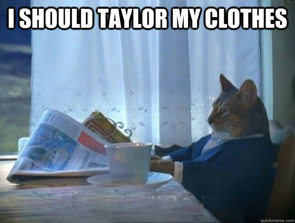 i should taylor my clothes  - morning realization newspaper cat meme