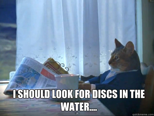 i should look for discs in the water  - 1 Cat