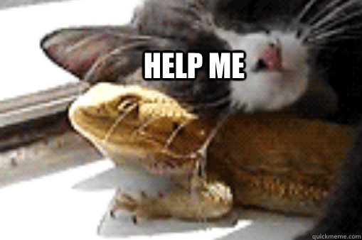 help me - 