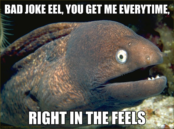 bad joke eel you get me everytime right in the feels - Bad Joke Eel