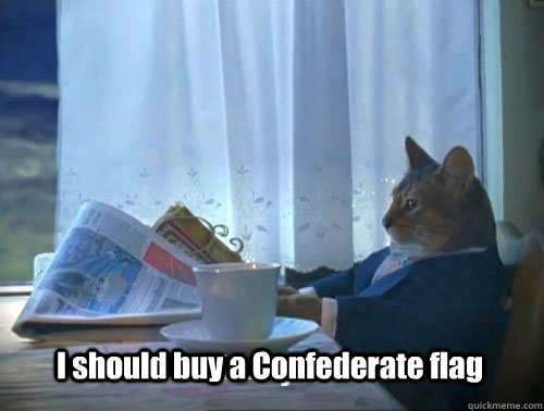 i should buy a confederate flag - Fancy Cat