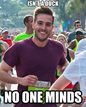 isnt a duck no one minds - Ridiculously photogenic guy