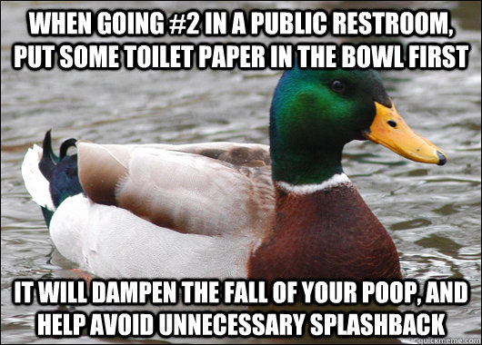 when going 2 in a public restroom put some toilet paper in - Actual Advice Mallard